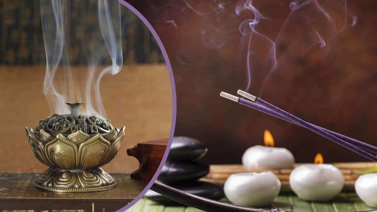 Les arômes des plantes : une mélodie qui soulage le corps et enchante l'âme et l'esprit